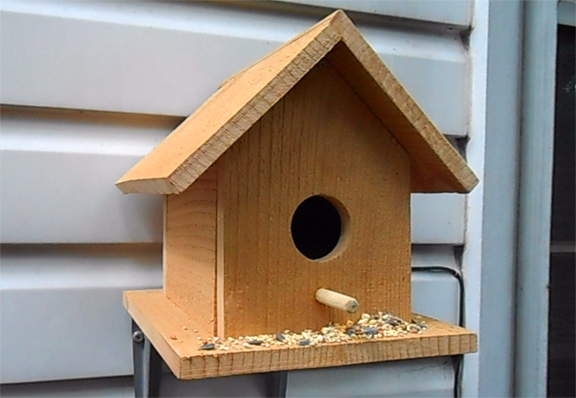 Bird_House_Mounted